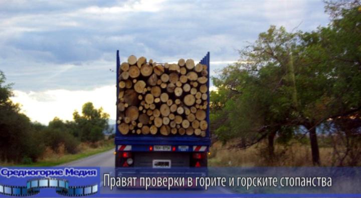 Правят проверки в горите и горските стопанства