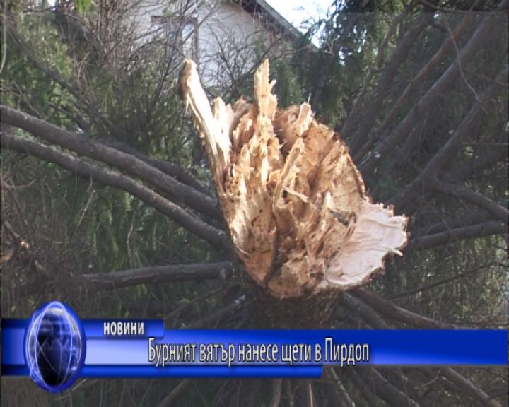 Бурният вятър нанесе щети в Пирдоп