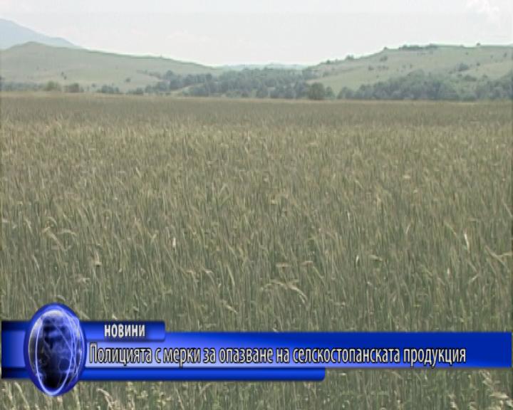 Полицията с мерки за опазване на селскостопанската продукция
