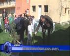 Децата от Златица и Пирдоп засадиха дръвчета