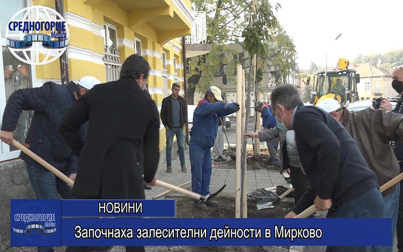Започнаха залесителни дейности в Мирково