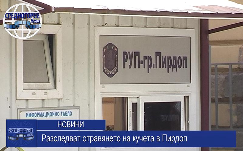 Разследват отравянето на кучета в Пирдоп