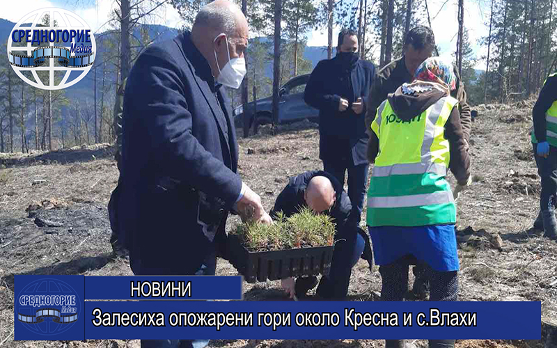 Залесиха опожарени гори около Кресна и с.Влахи