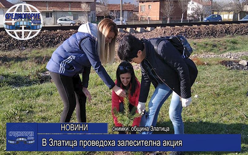В Златица проведоха залесителна акция