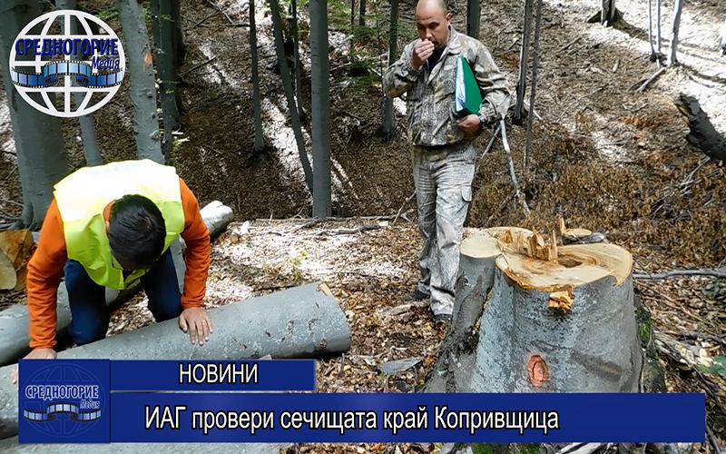 ИАГ провери сечищата край Копривщица