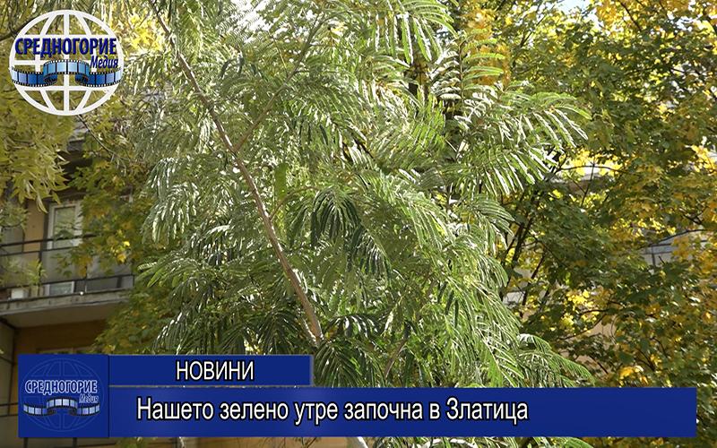 «Нашето зелено утре» започна в Златица